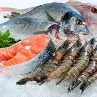 YOI Seafood Shop