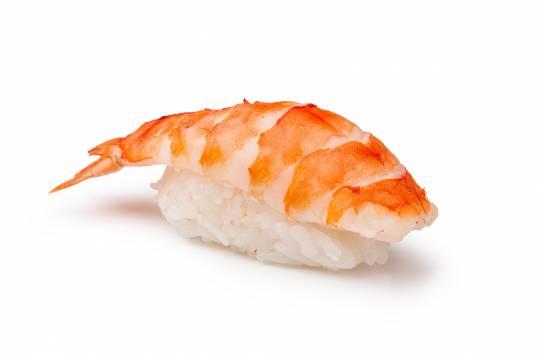 Sushi Ebi Nigiri